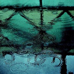 rainy_season_by_appleplusskeleton
